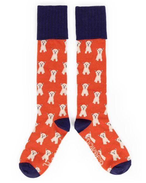 Powder Westie Boot Sock in Tangerine