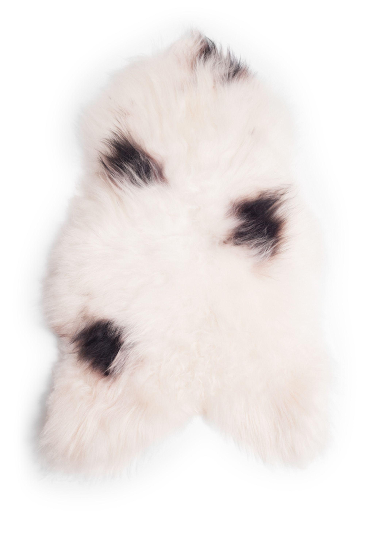 Spotted Icelandic Sheepskin M
