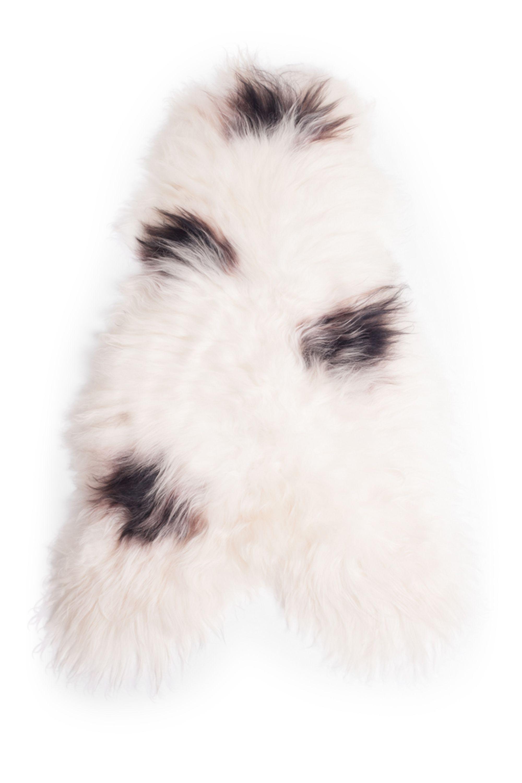 Spotted Icelandic Sheepskin