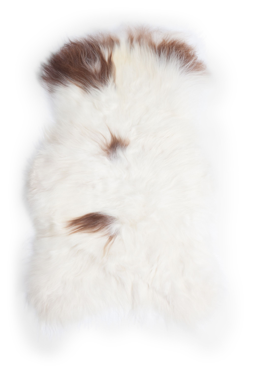 Spotted Icelandic Sheepskin L
