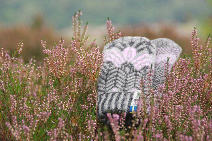 Öjbro Wool Mittens in Fager Iris